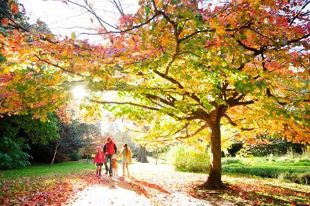 autumn-gardens